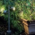 Plant Lighting Ideas