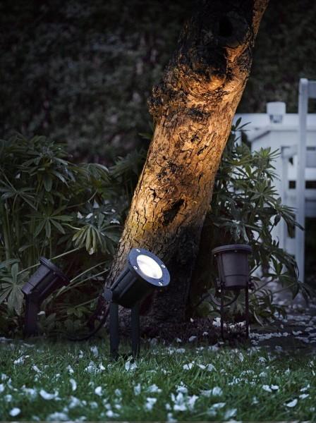 Nordlux 20789903 Spotlight Black Spot Light