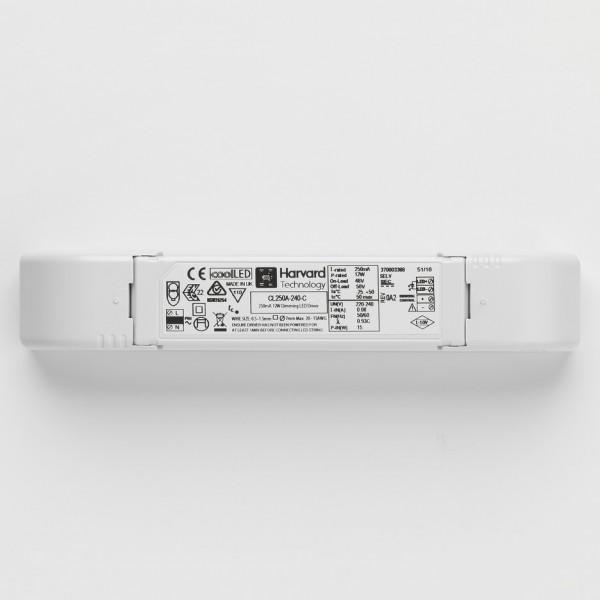 Astro 6008046 LED Driver CC 250mA 3.8-14.5W 1-10V Dim