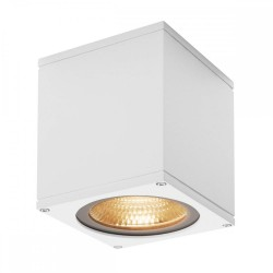 SLV 234531 White Big Theo 21W 3000K LED Outdoor Ceiling Light