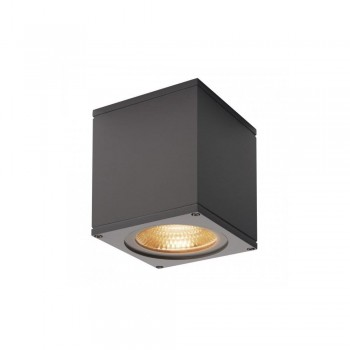 SLV 234535 Anthracite Big Theo 21W 3000K LED Outdoor Ceiling Light